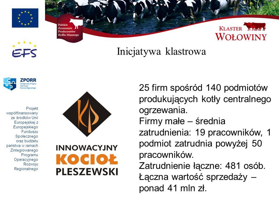 Inicjatywa klastrowa 25 firm spośród 140 podmiotów produkujących kotły centralnego ogrzewania.