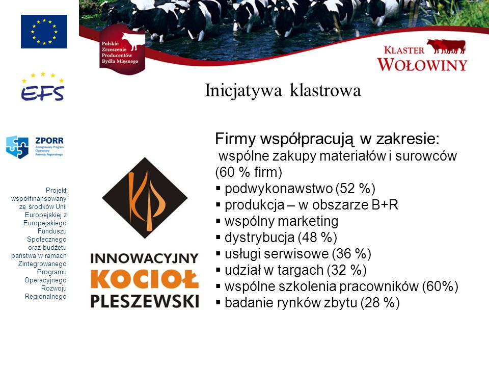 Inicjatywa klastrowa Firmy współpracują w zakresie: