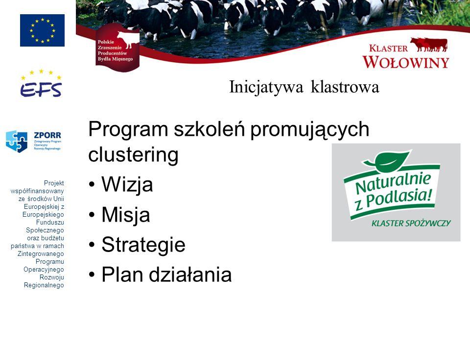 Program szkoleń promujących clustering Wizja Misja Strategie