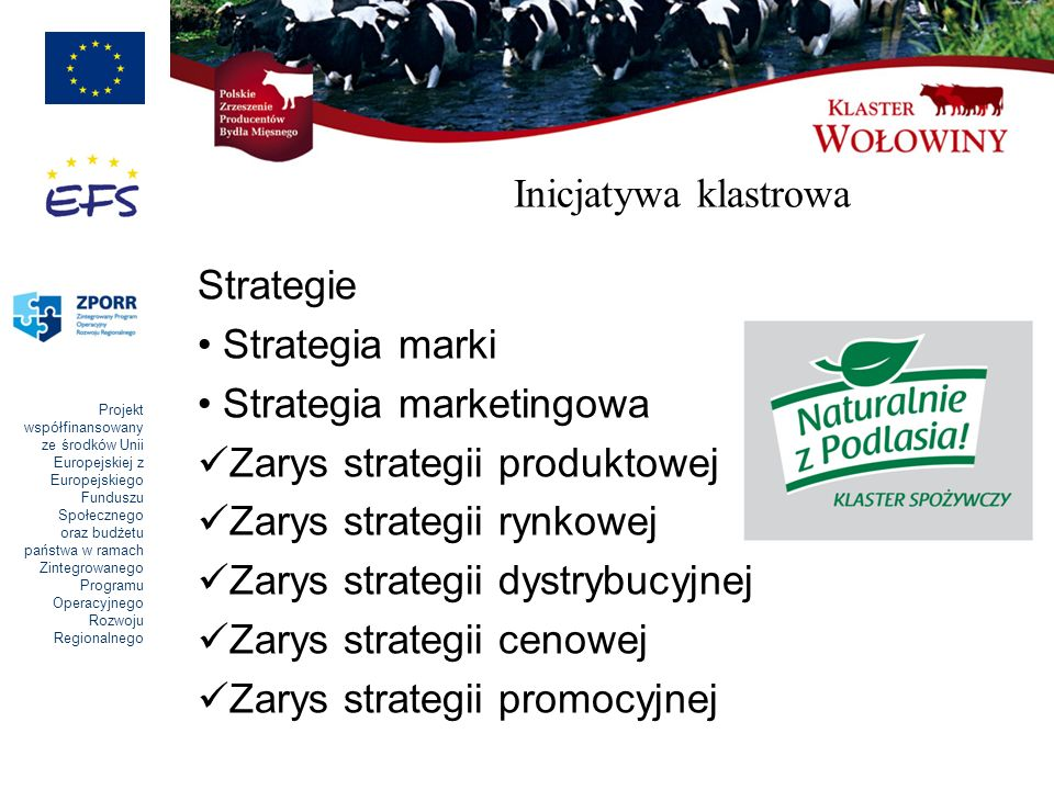 Inicjatywa klastrowa Strategie. Strategia marki. Strategia marketingowa. Zarys strategii produktowej.