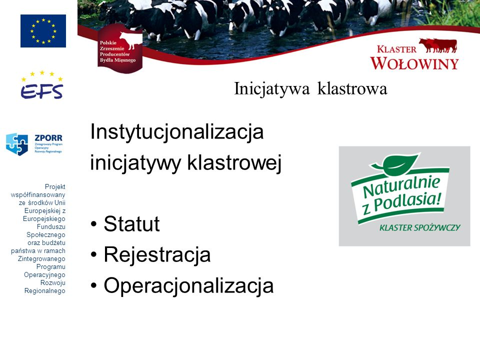 inicjatywy klastrowej Statut Rejestracja Operacjonalizacja