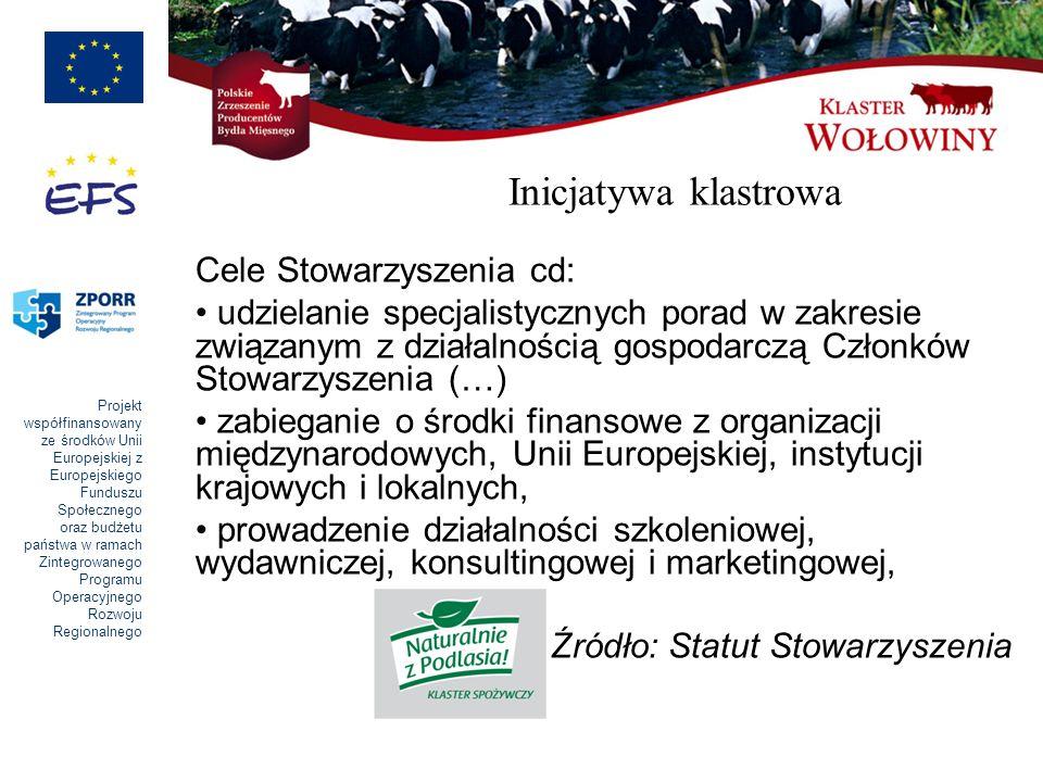Inicjatywa klastrowa Cele Stowarzyszenia cd: