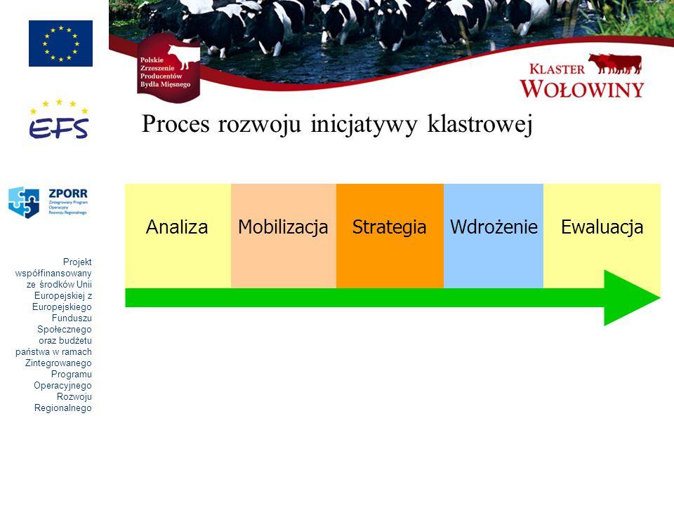Proces rozwoju inicjatywy klastrowej
