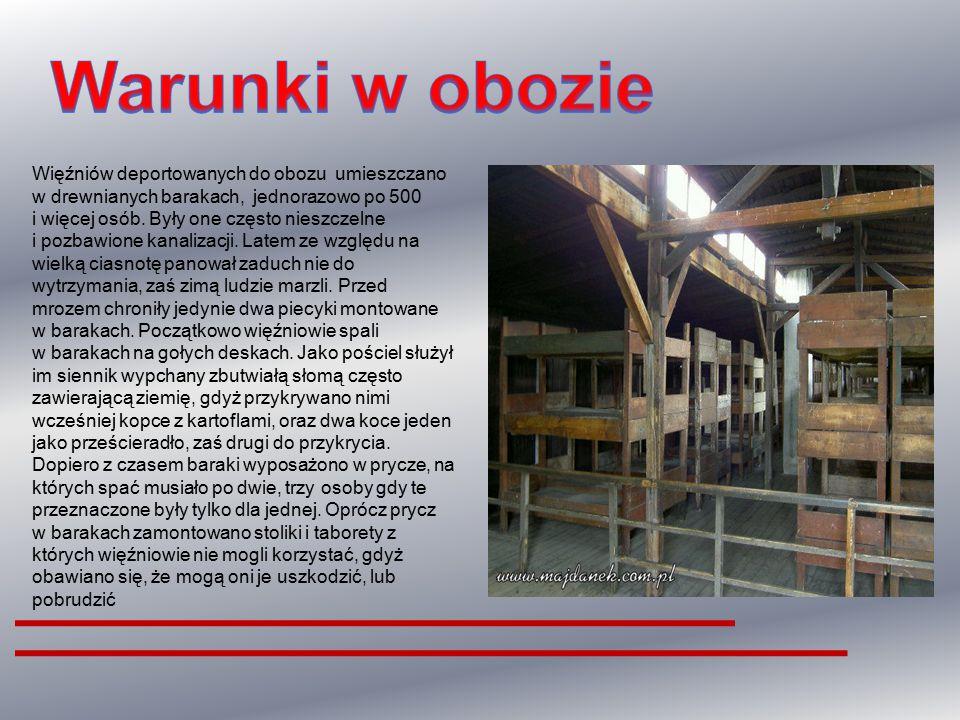 Warunki w obozie Więźniów deportowanych do obozu umieszczano w drewnianych barakach, jednorazowo po 500.