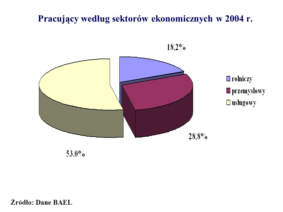 Pracujący według sektorów ekonomicznych w 2004 r.