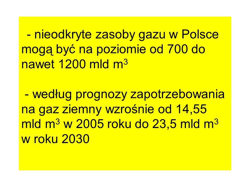 - nieodkryte zasoby gazu w Polsce mogą być na poziomie od 700 do nawet 1200 mld m3 - według prognozy zapotrzebowania na gaz ziemny wzrośnie od 14,55 mld m3 w 2005 roku do 23,5 mld m3 w roku 2030