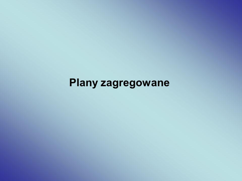 Plany zagregowane