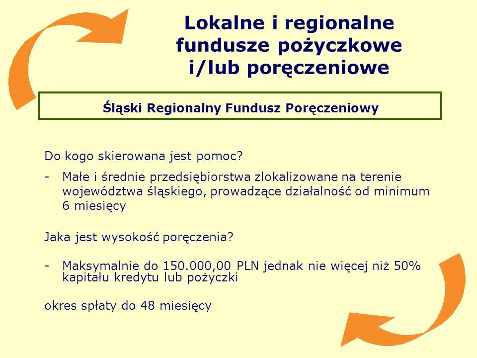Lokalne i regionalne fundusze pożyczkowe i/lub poręczeniowe