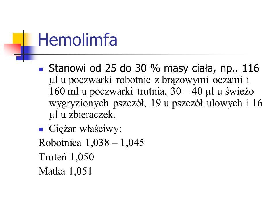 Hemolimfa