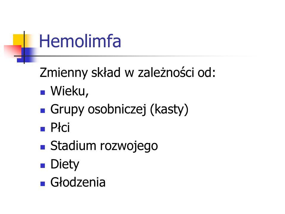 Hemolimfa Zmienny skład w zależności od: Wieku,