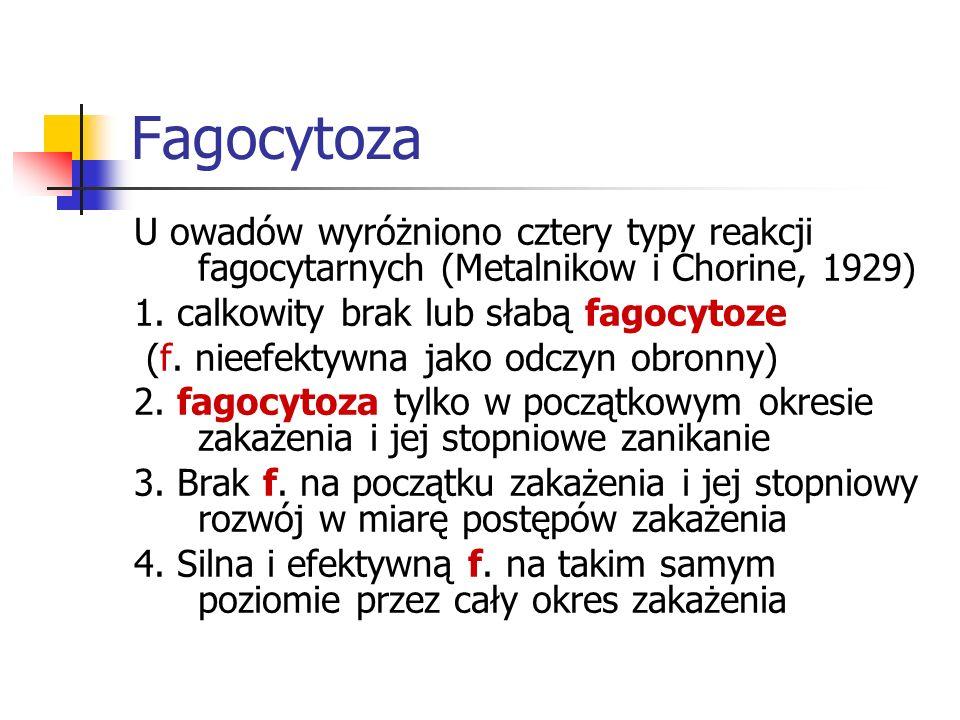 FagocytozaU owadów wyróżniono cztery typy reakcji fagocytarnych (Metalnikow i Chorine, 1929) 1. calkowity brak lub słabą fagocytoze.