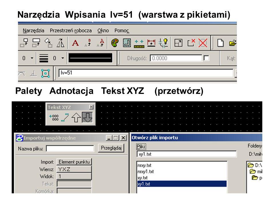 Narzędzia Wpisania lv=51 (warstwa z pikietami)