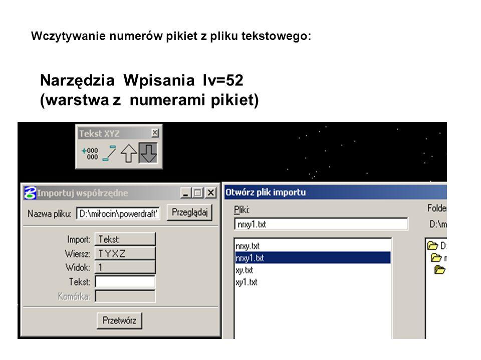 Narzędzia Wpisania lv=52 (warstwa z numerami pikiet)