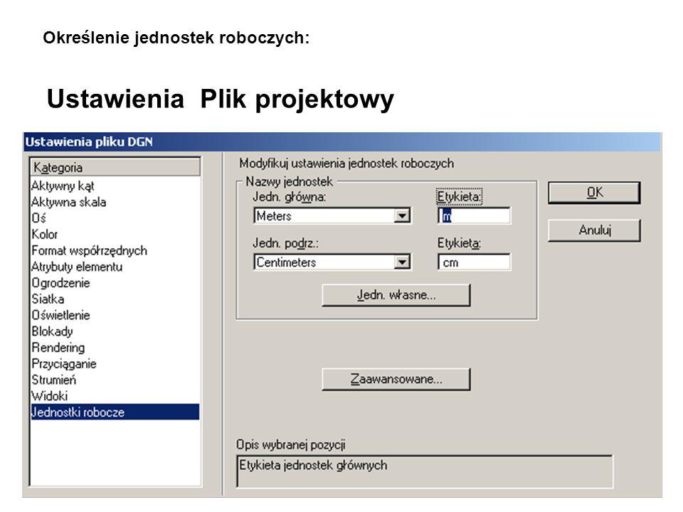 Ustawienia Plik projektowy