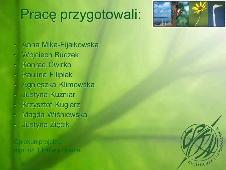 Pracę przygotowali: Anna Mika-Fijałkowska Wojciech Buczek