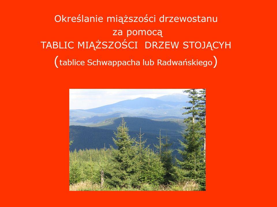 (tablice Schwappacha lub Radwańskiego)