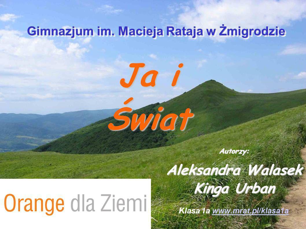 Autorzy: Aleksandra Walasek Kinga Urban Klasa 1a www.mrat.pl/klasa1a