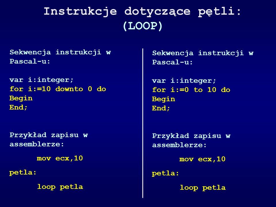 Instrukcje dotyczące pętli: