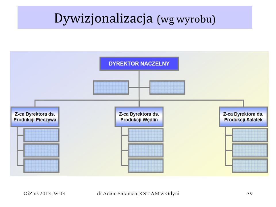 Dywizjonalizacja (wg wyrobu)