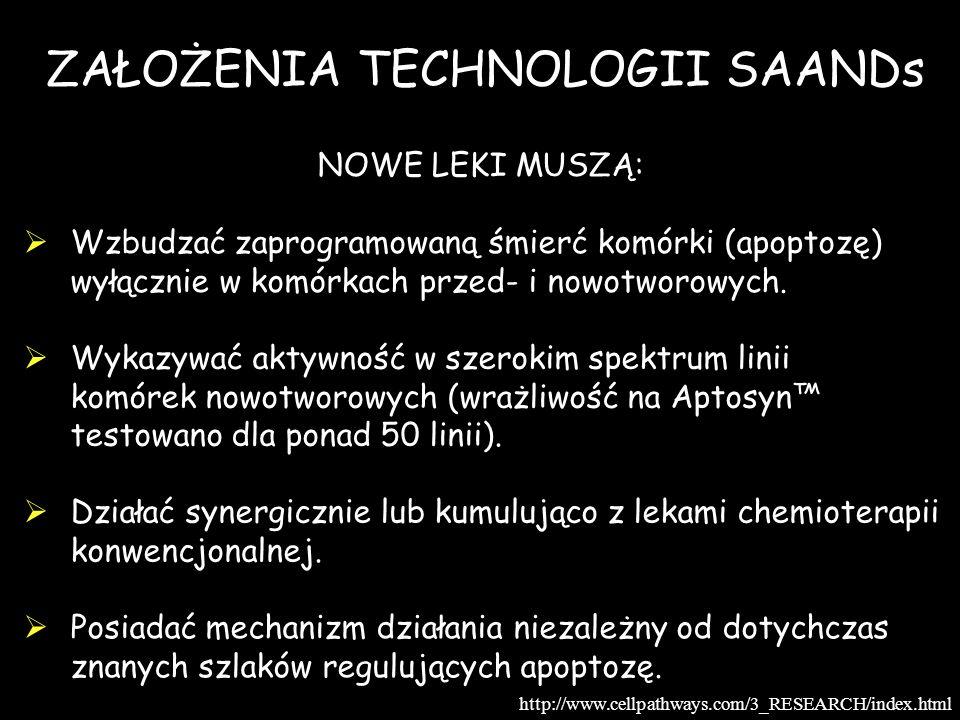 ZAŁOŻENIA TECHNOLOGII SAANDs