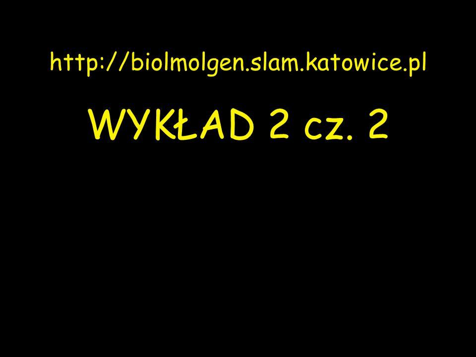 http://biolmolgen.slam.katowice.pl WYKŁAD 2 cz. 2