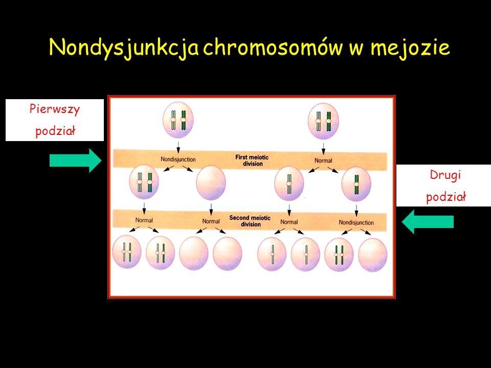 Nondysjunkcja chromosomów w mejozie