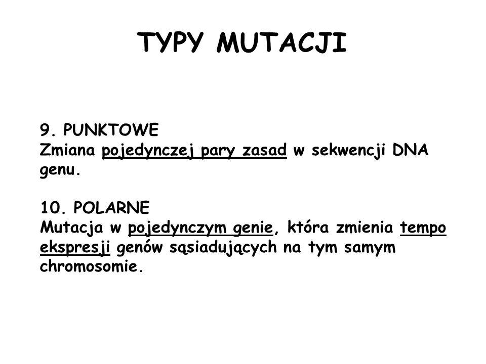 TYPY MUTACJI 9. PUNKTOWE Zmiana pojedynczej pary zasad w sekwencji DNA