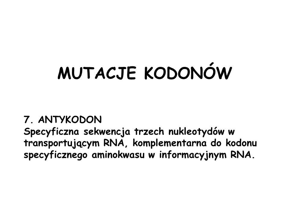 MUTACJE KODONÓW 7. ANTYKODON