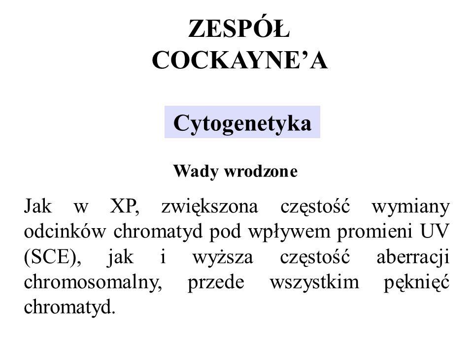 ZESPÓŁ COCKAYNE'A Cytogenetyka