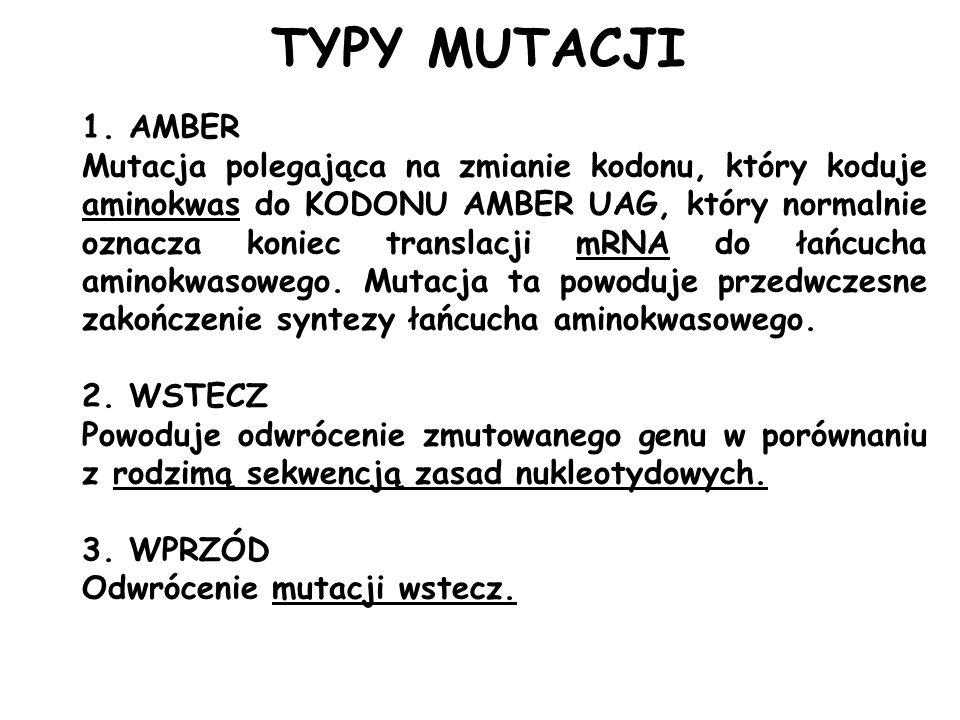 TYPY MUTACJI AMBER.