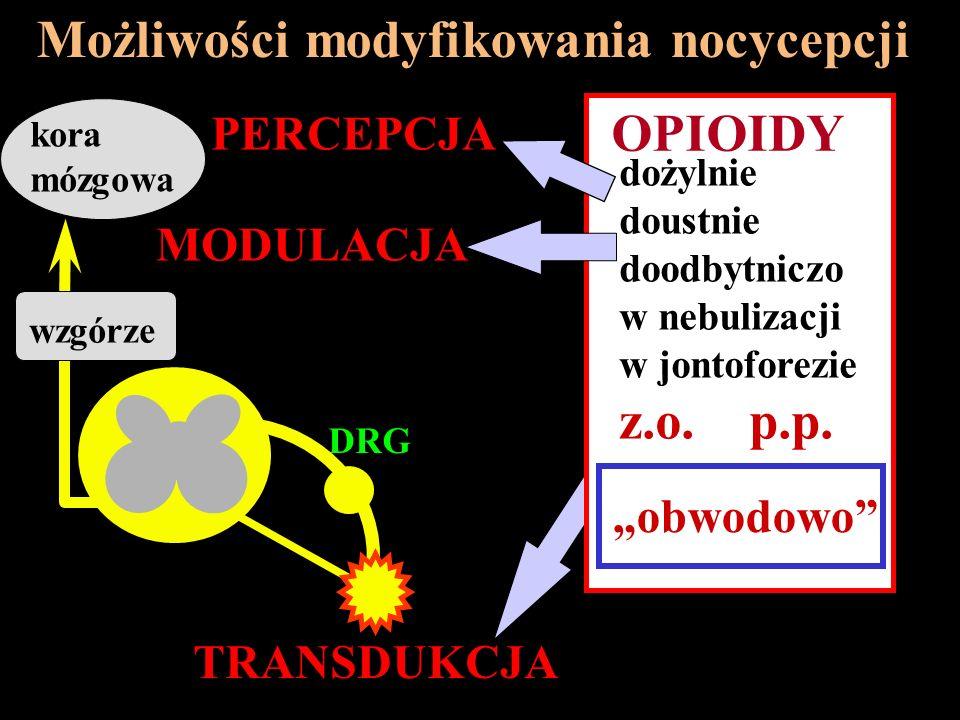 Możliwości modyfikowania nocycepcji
