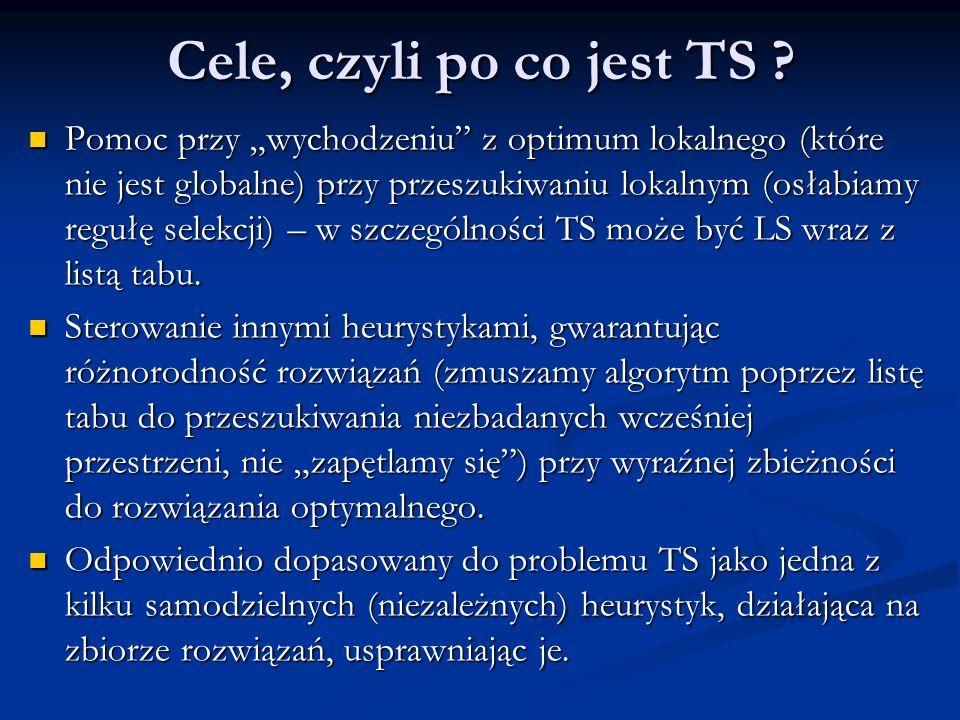 Cele, czyli po co jest TS