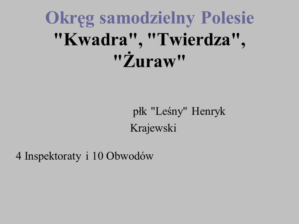 Okręg samodzielny Polesie Kwadra , Twierdza , Żuraw