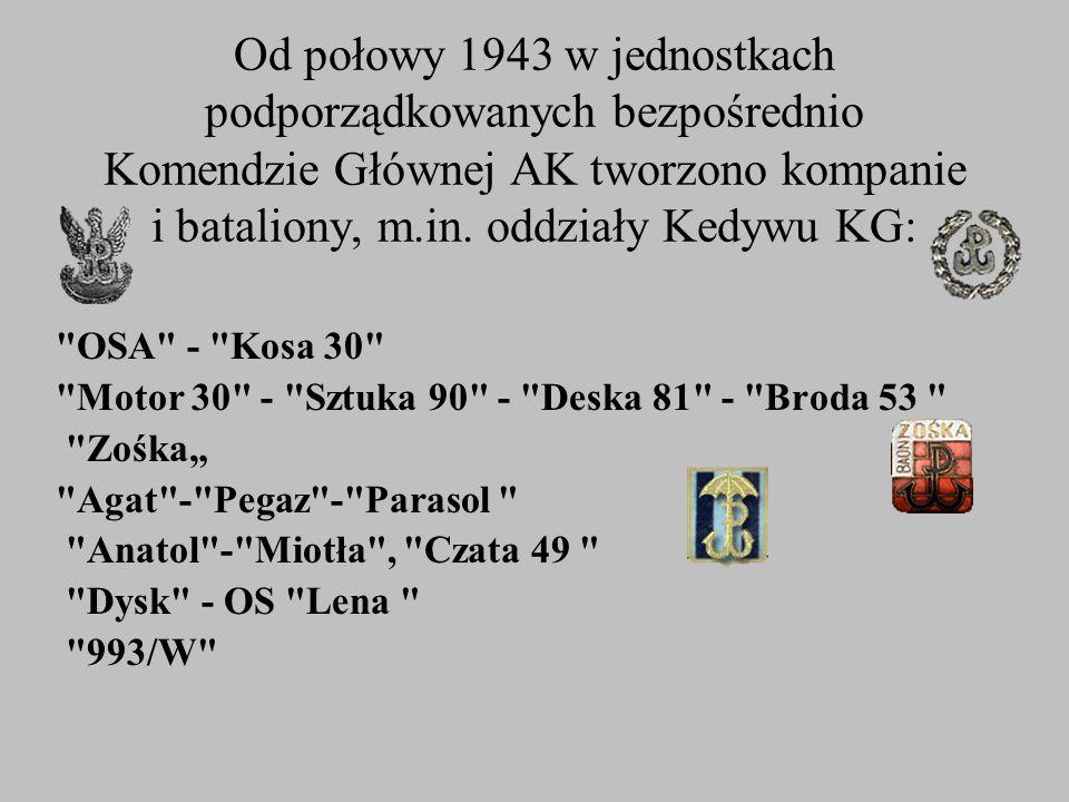 Od połowy 1943 w jednostkach podporządkowanych bezpośrednio Komendzie Głównej AK tworzono kompanie i bataliony, m.in. oddziały Kedywu KG: