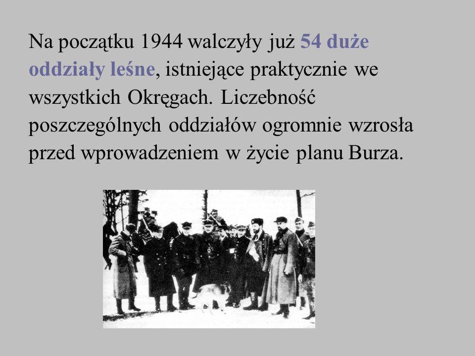 Na początku 1944 walczyły już 54 duże