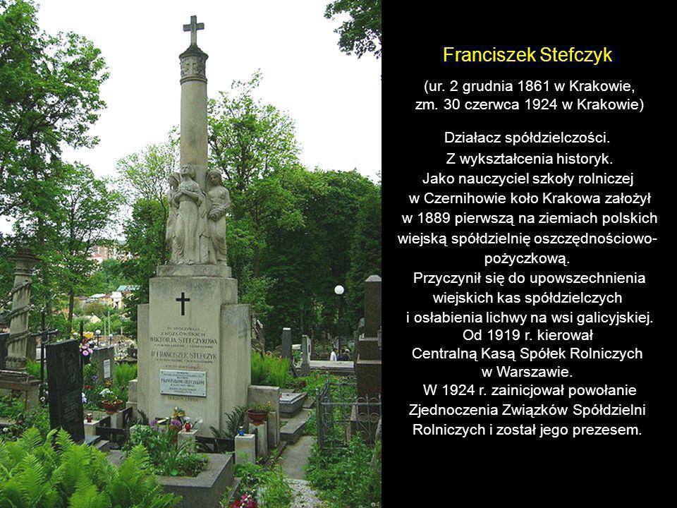 Franciszek Stefczyk (ur. 2 grudnia 1861 w Krakowie,