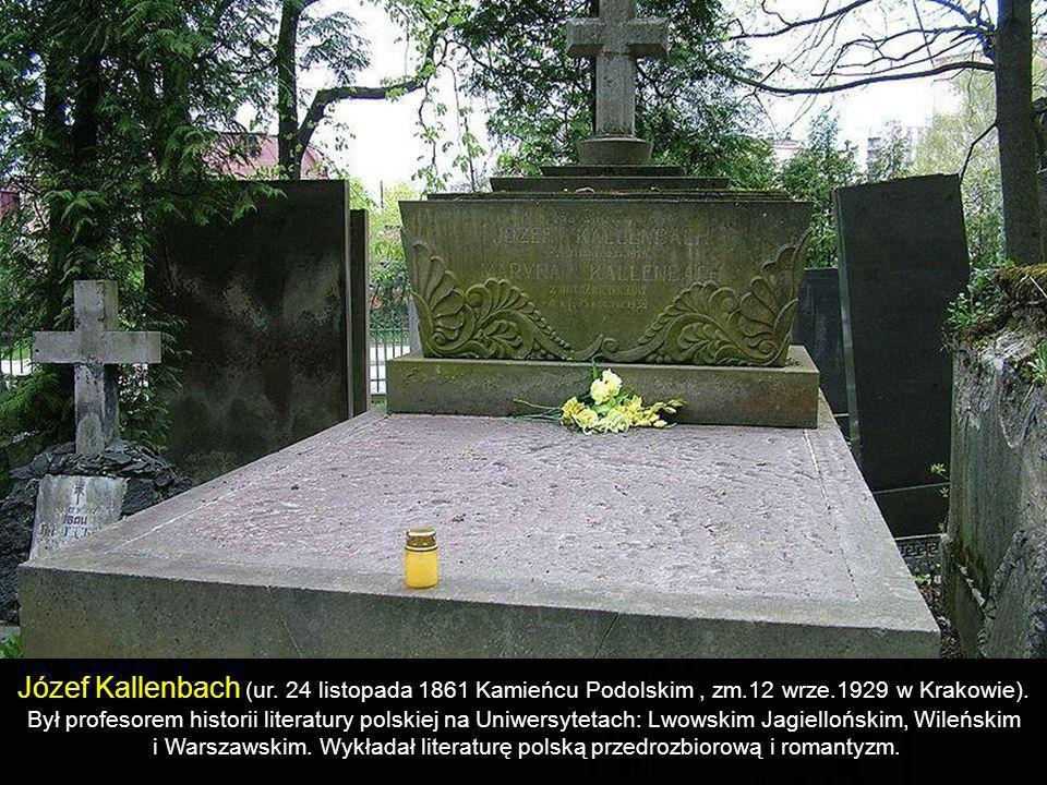 i Warszawskim. Wykładał literaturę polską przedrozbiorową i romantyzm.