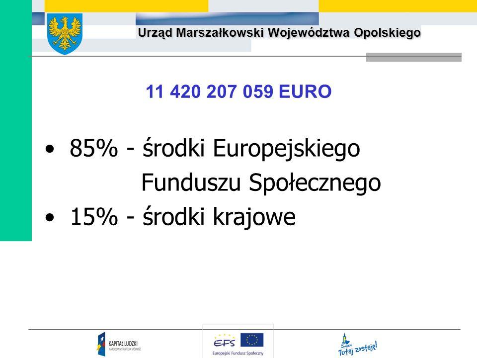 85% - środki Europejskiego Funduszu Społecznego 15% - środki krajowe