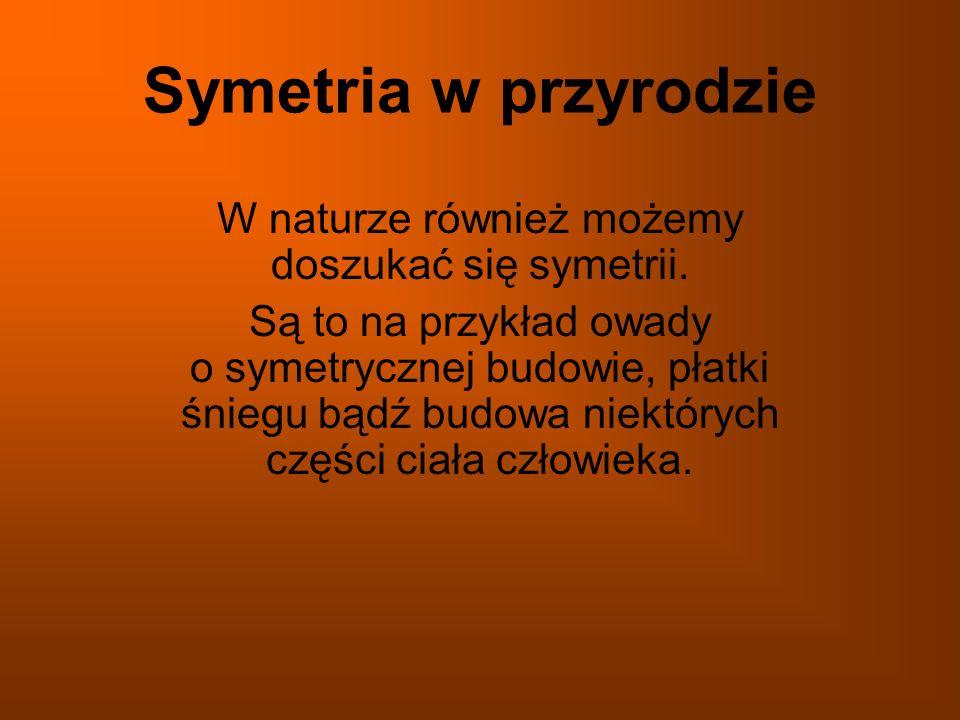W naturze również możemy doszukać się symetrii.