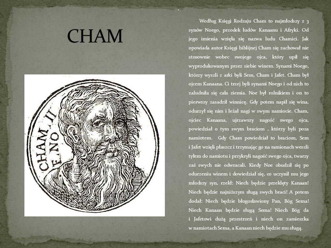 Według Księgi Rodzaju Cham to najmłodszy z 3 synów Noego, przodek ludów Kanaanu i Afryki. Od jego imienia wzięła się nazwa ludu Chamici. Jak opowiada autor Księgi biblijnej Cham się zachował nie stosownie wobec swojego ojca, który upił się wyprodukowanym przez siebie winem. Synami Noego, którzy wyszli z arki byli Sem, Cham i Jafet. Cham był ojcem Kanaana. Ci trzej byli synami Noego i od nich to zaludniła się cała ziemia. Noe był rolnikiem i on to pierwszy zasadził winnicę. Gdy potem napił się wina, odurzył się nim i leżał nagi w swym namiocie. Cham, ojciec Kanaana, ujrzawszy nagość swego ojca, powiedział o tym swym braciom , którzy byli poza namiotem. Gdy Cham powiedział to braciom, Sem i Jafet wzięli płaszcz i trzymając go na ramionach weszli tyłem do namiotu i przykryli nagość swego ojca, twarzy zaś swych nie odwracali. Kiedy Noe obudził się po odurzeniu winem i dowiedział się, co uczynił mu jego młodszy syn, rzekł: Niech będzie przeklęty Kanaan! Niech będzie najniższym sługą swych braci! A potem dodał: Niech będzie błogosławiony Pan, Bóg Sema! Niech Kanaan będzie sługą Sema! Niech Bóg da i Jafetowi dużą przestrzeń i niech on zamieszka w namiotach Sema, a Kanaan niech będzie mu sługą.