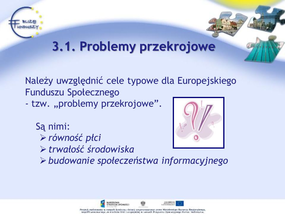 """3.1. Problemy przekrojowe Należy uwzględnić cele typowe dla Europejskiego. Funduszu Społecznego. - tzw. """"problemy przekrojowe ."""