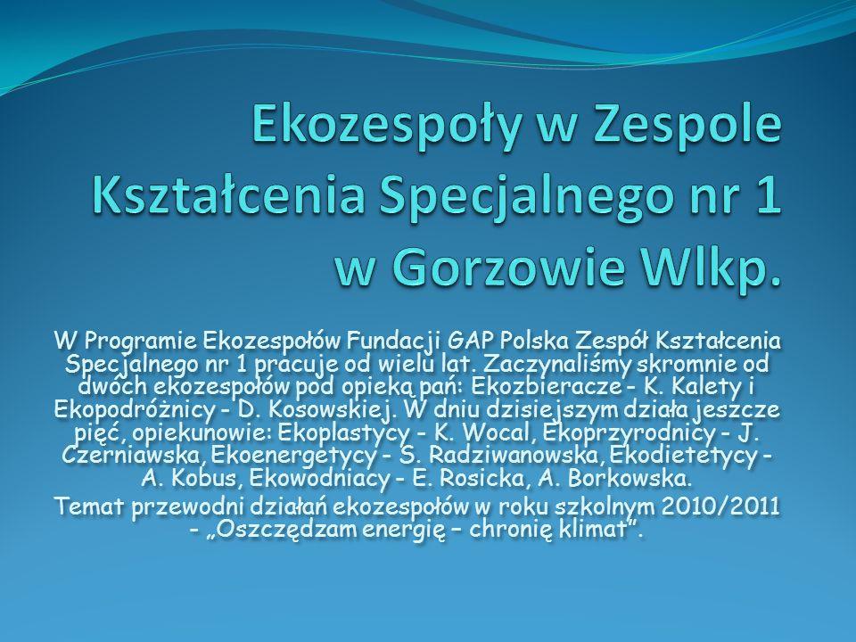 Ekozespoły w Zespole Kształcenia Specjalnego nr 1 w Gorzowie Wlkp.