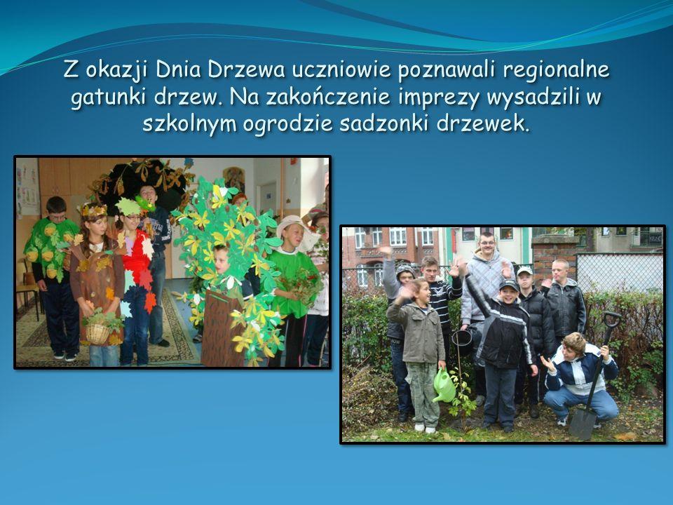 Z okazji Dnia Drzewa uczniowie poznawali regionalne gatunki drzew