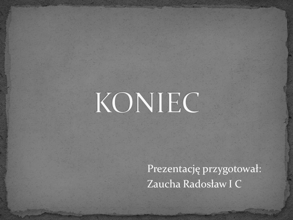 KONIEC Prezentację przygotował: Zaucha Radosław I C