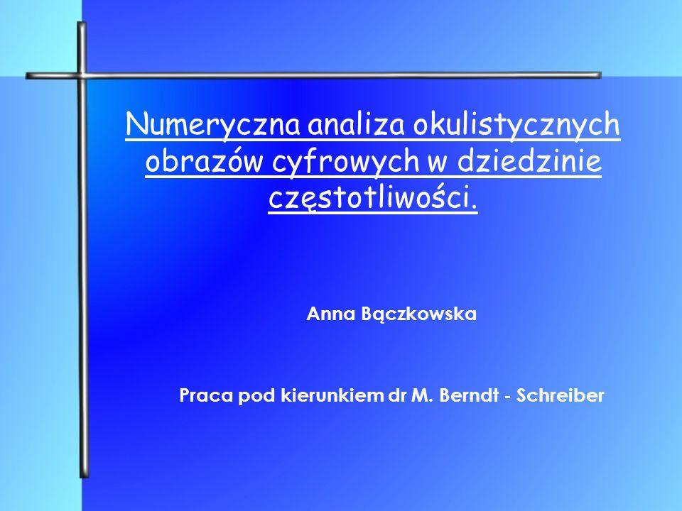 Anna Bączkowska Praca pod kierunkiem dr M. Berndt - Schreiber