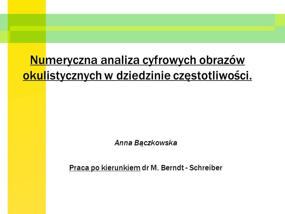 Anna Bączkowska Praca po kierunkiem dr M. Berndt - Schreiber