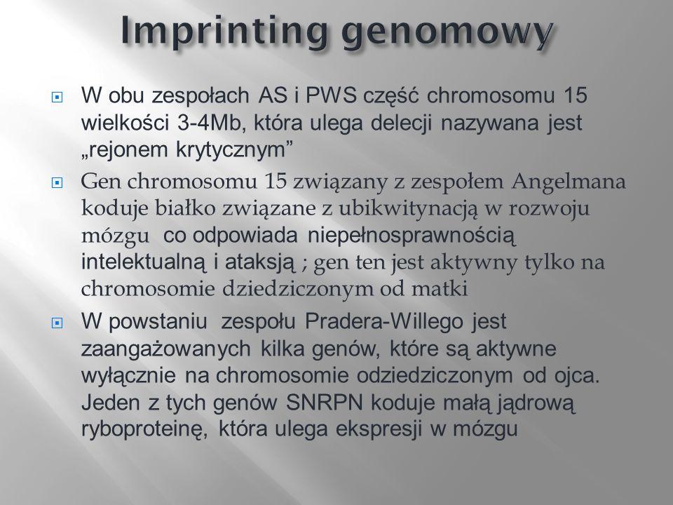 """Imprinting genomowy W obu zespołach AS i PWS część chromosomu 15 wielkości 3-4Mb, która ulega delecji nazywana jest """"rejonem krytycznym"""
