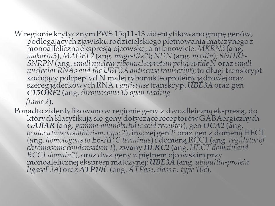 W regionie krytycznym PWS 15q11-13 zidentyfikowano grupę genów, podlegających zjawisku rodzicielskiego piętnowania matczynego z monoalleliczną ekspresją ojcowską, a mianowicie: MKRN3 (ang. makorin3), MAGEL2 (ang. mage-like2); NDN (ang. necdin); SNURF-SNRPN (ang. small nuclear ribonucleoprotein polypeptide N oraz small nucleolar RNAs and the UBE3A antisense transcript); to długi transkrypt kodujący polipeptyd N małej rybonukleoproteiny jądrowej oraz szereg jąderkowych RNA i antisense transkrypt UBE3A oraz gen C15ORF2 (ang. chromosome 15 open reading