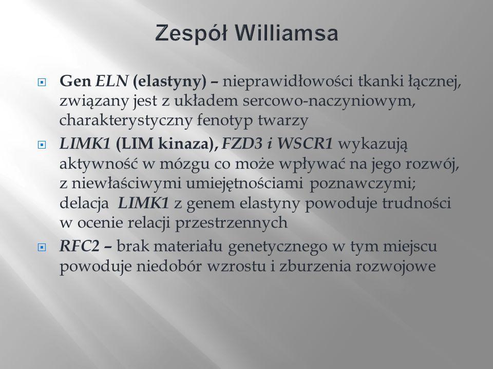 Zespół Williamsa Gen ELN (elastyny) – nieprawidłowości tkanki łącznej, związany jest z układem sercowo-naczyniowym, charakterystyczny fenotyp twarzy.
