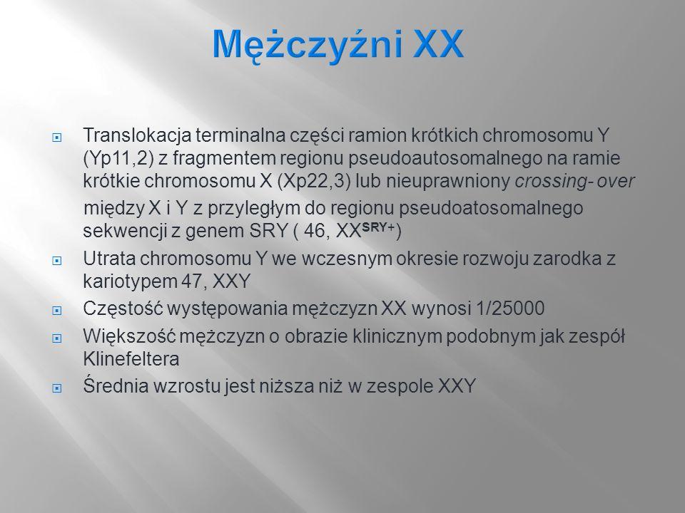 Mężczyźni XX